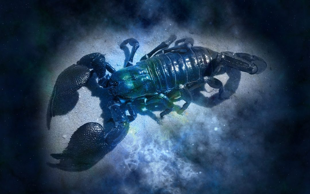 Escorpio: La muerte y la transformación